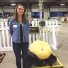 Klaire Bielonko wins Silver Medal at the Big E for her 197-pound giant pumpkin.