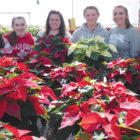 Students of the Suffield Regional  Agriscience Center are pictured in the SHS greenhouse with poinsettias the FFA will sell until December 6. From the left: Gianna Holcomb, Granby; Renée Tautic, Suffield; Brittani Burke, Suffield; RJ Fenoff, Enfield; Makena Shea, Windsor Locks; Morgan Benware, East Granby. They are all sophomores.