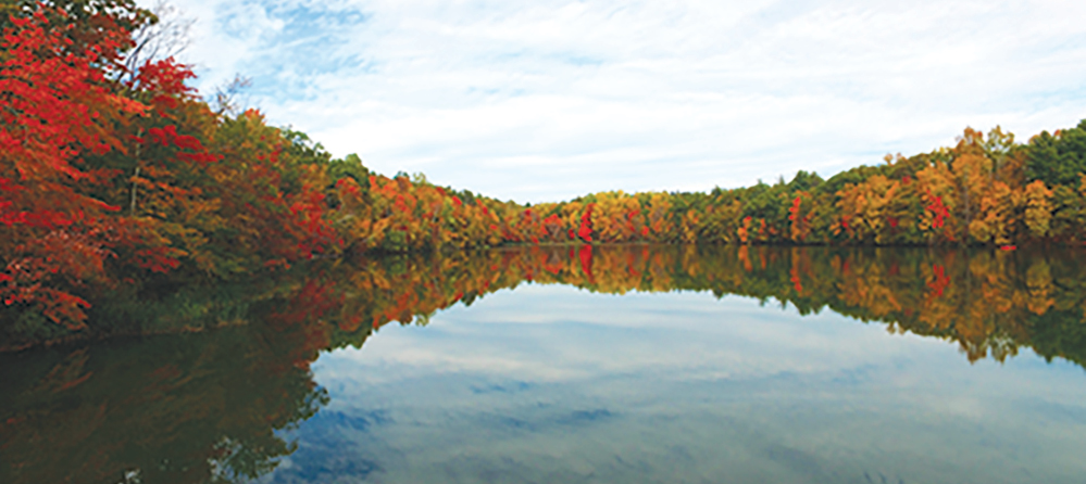 A placid White's Pond doubles this beautiful picture of October color at Sunrise Park.